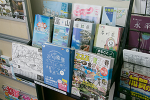 You can get tourist brochures about the surrounding area for free.